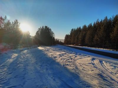 Рассвет в зимнем лесу