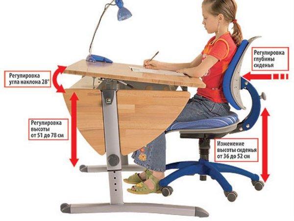 Школьная мебель как выбрать