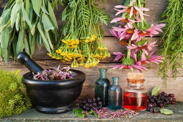 Природная аптека. целебные травы